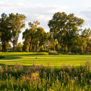 Cattails GC: #13