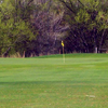 A view of green at Link-N-Greens Golf Course